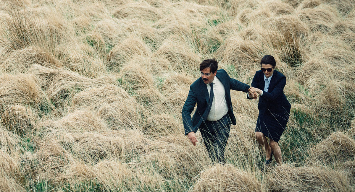 Bild für den Film The Lobster